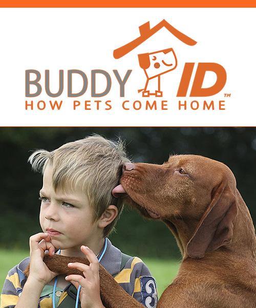 BUddy-ID-Cover-Last